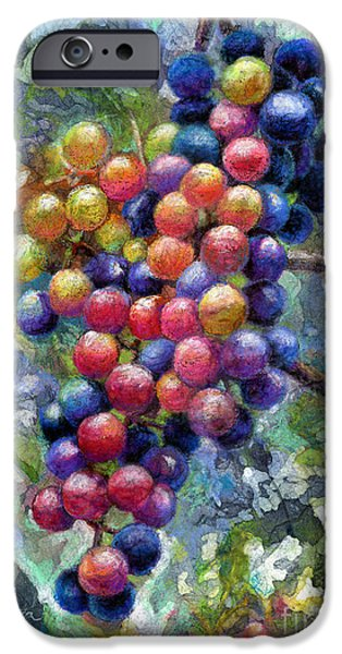 Blue Grapes iPhone Cases - Wine Grapes iPhone Case by Hailey E Herrera