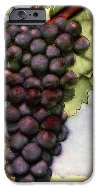 Grapevine Red Leaf iPhone Cases - Wine on the Vine iPhone Case by John K Woodruff