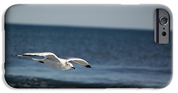Flying Seagull iPhone Cases - Winging It iPhone Case by Suzanne Gaff