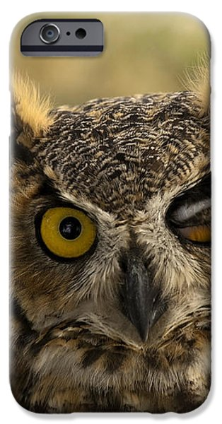 Wink iPhone Case by Mike  Dawson