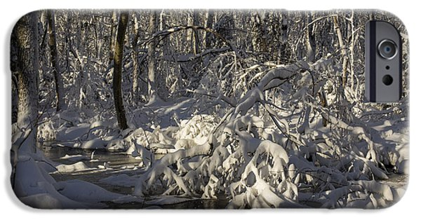 Woodland Scenes iPhone Cases - Winter at Borden Brook iPhone Case by Andrew Pacheco