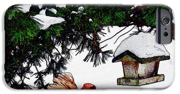Caruso iPhone Cases - Winter Birdfeeder iPhone Case by Anthony Caruso