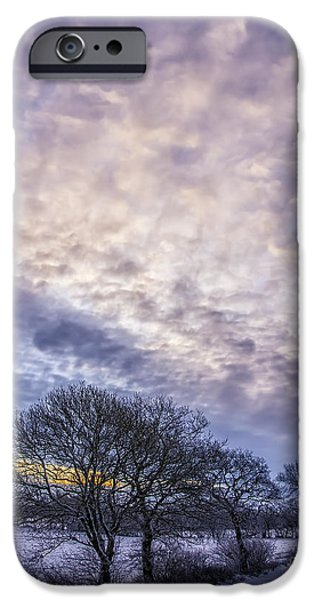 Snowy Day iPhone Cases - Winter Dawn iPhone Case by Antony McAulay