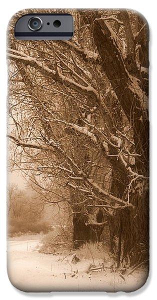Winter Dream iPhone Case by Carol Groenen