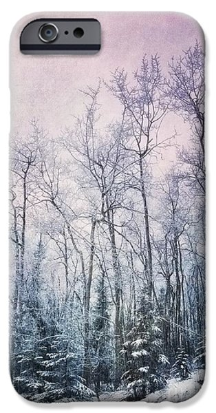 Cold iPhone Cases - Winter Forest iPhone Case by Priska Wettstein