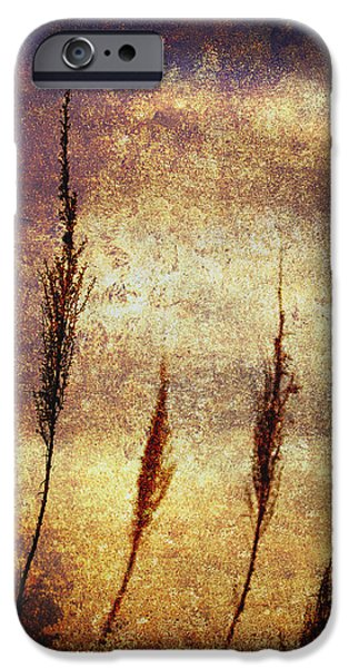 Abstract Digital Photographs iPhone Cases - Winter Gold iPhone Case by Skip Nall