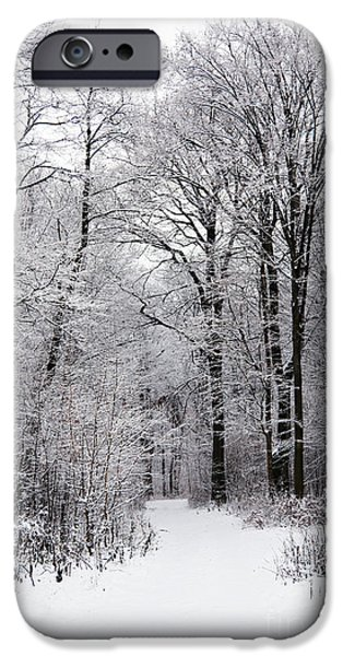 Wintertime iPhone Cases - Winter in the forest iPhone Case by Gabriela Insuratelu