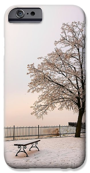 Snowy Day iPhone Cases - Winter Landscape 1 iPhone Case by Marcin Rogozinski