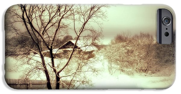 Winter Scenery iPhone Cases - Winter Loneliness iPhone Case by Jenny Rainbow