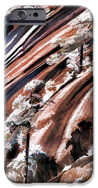 Pines iPhone Cases - Winter Pines iPhone Case by Dennis Cox WorldViews