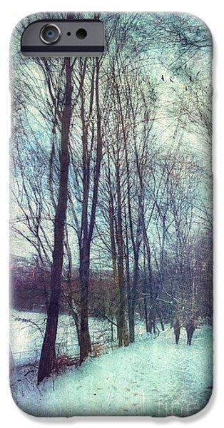 Couple iPhone Cases - Winter Stroll iPhone Case by Dirk Wuestenhagen