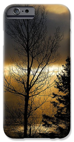Skies iPhone Cases - Winter Sunrise 2 iPhone Case by Sebastian Musial