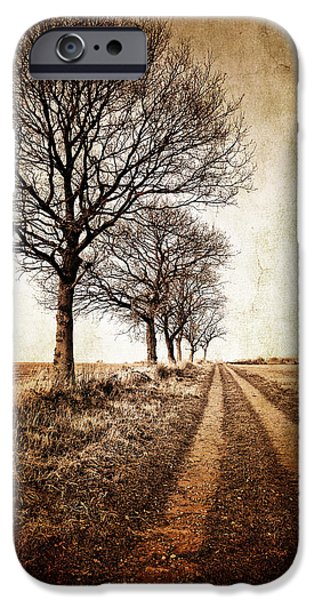 winter track with trees iPhone Case by Meirion Matthias