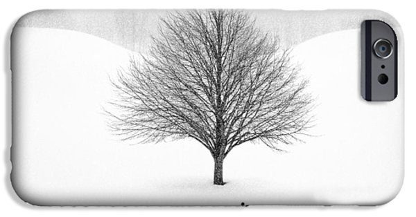 Winter Trees Photographs iPhone Cases - Winter Tree #13 iPhone Case by Matt Anderson