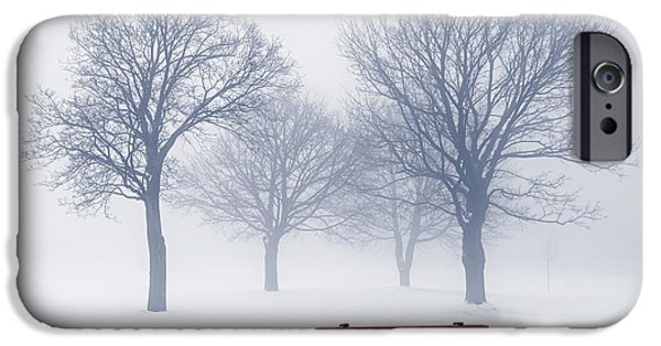 Snow Scene iPhone Cases - Winter trees and bench in fog iPhone Case by Elena Elisseeva