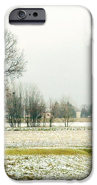 Winter trees iPhone Case by Silvia Ganora