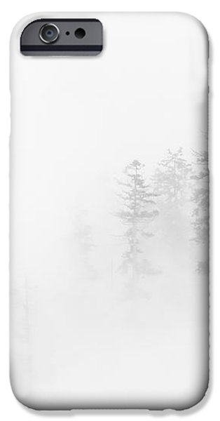 Winter Veil iPhone Case by Mike  Dawson
