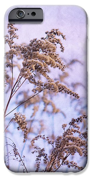 Wintertime Mixed Media iPhone Cases - Wintertime iPhone Case by Angela Doelling AD DESIGN Photo and PhotoArt