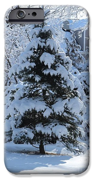 Snowy iPhone Cases - Wintry Pine Tree in the Morning iPhone Case by Jari Hawk