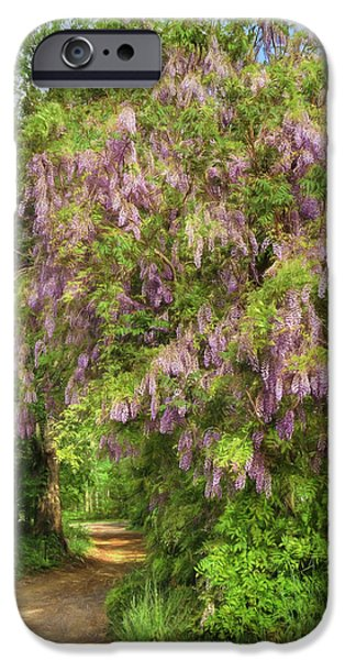 Spring Scenery iPhone Cases - Wisteria Lane iPhone Case by Lori Deiter