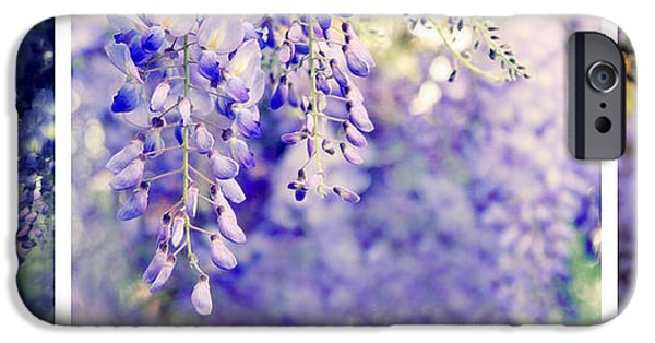 Botanical iPhone Cases - Wisteria Triptych iPhone Case by Jessica Jenney