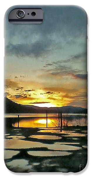 Animals Photographs iPhone Cases - Wolf Lodge Pot Holes iPhone Case by MaJoR  Images