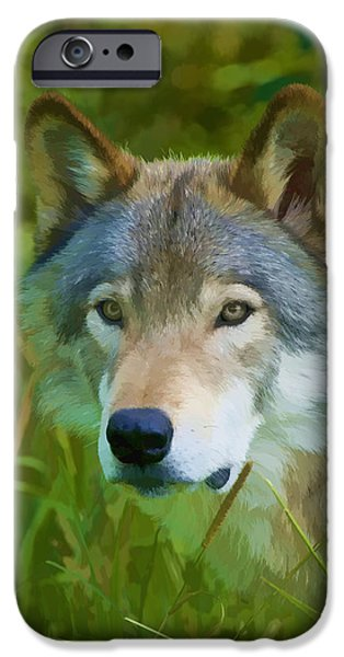 Wolf Pics Mixed Media iPhone Cases - Wolf Portrait iPhone Case by Michael Cummings