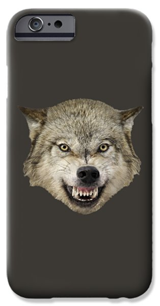 Animals Photographs iPhone Cases - Wolf Snarling iPhone Case by Wildlife Fine Art