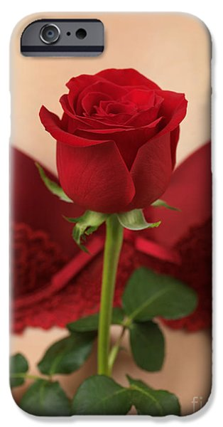 Woman Holding a Red Rose iPhone Case by Oleksiy Maksymenko