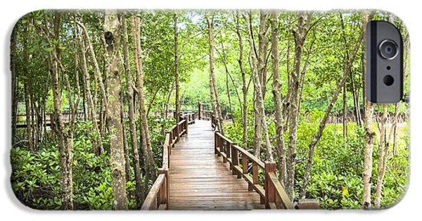 Mangrove Forest iPhone Cases - Wood corridor at mangrove forest iPhone Case by Phongkit Longthong