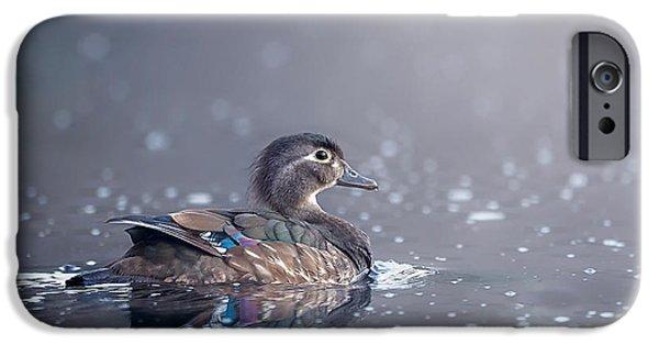 Eerie iPhone Cases - Wood Duck Hen iPhone Case by Bill Wakeley