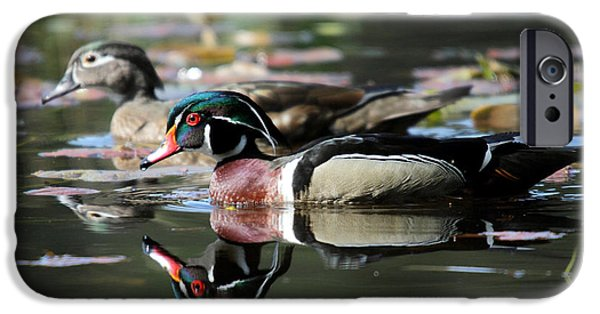 Beaver Lake iPhone Cases - Wood Ducks iPhone Case by Pierre Leclerc Photography