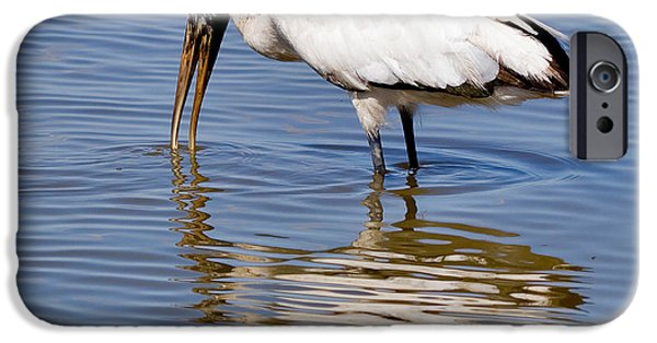 Stork iPhone Cases - Wood Stork iPhone Case by Louise Heusinkveld