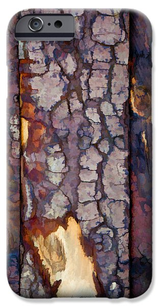 Pines iPhone Cases - Wood Textures iPhone Case by Antique Images