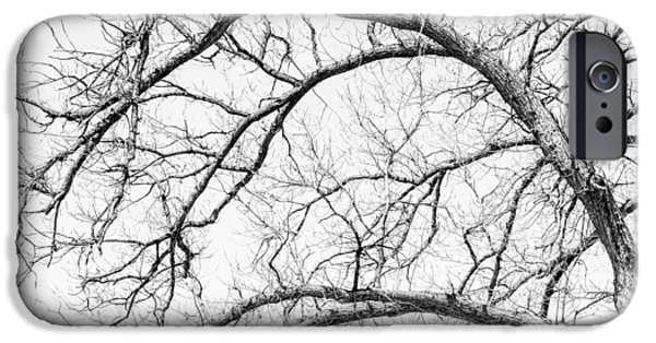 Storm iPhone Cases - Wooden Arteries iPhone Case by Az Jackson