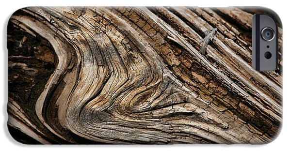 Wood Grain iPhone Cases - Woodgrain iPhone Case by Bonnie Bruno