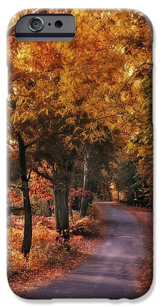 Autumn Road iPhone Cases - Woodland Path iPhone Case by Jessica Jenney