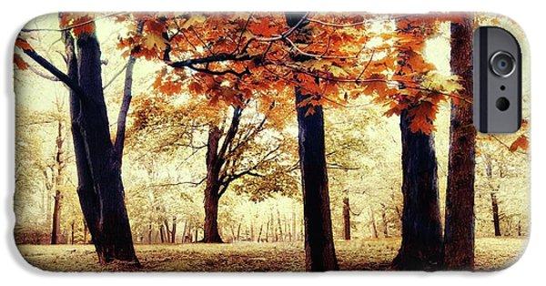 Autumn Woods iPhone Cases - Woodland Wonder iPhone Case by Jessica Jenney