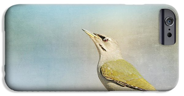 Animal Picture iPhone Cases - Woodpecker Stilllife iPhone Case by Heike Hultsch