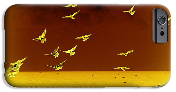 Flying Seagull iPhone Cases - Words have no wings iPhone Case by Susanne Van Hulst