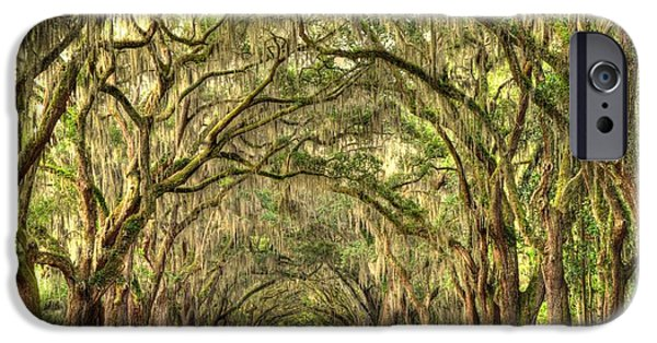 Historic Site iPhone Cases - Wormsloe Oaks iPhone Case by Linda Covino