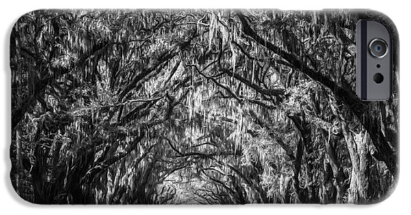 Historic Site iPhone Cases - Wormsloe Plantation Oaks BW iPhone Case by Joan Carroll