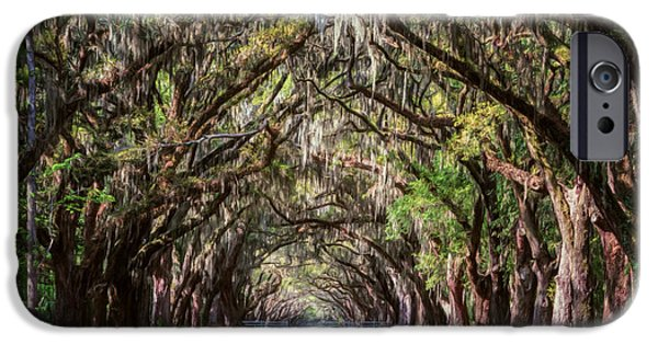 Historic Site iPhone Cases - Wormsloe Plantation Oaks iPhone Case by Joan Carroll