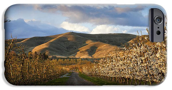 Yakima Valley iPhone Cases - Yakima Valley Spring iPhone Case by Mike  Dawson