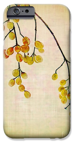 Yellow Berries iPhone Case by Judi Bagwell