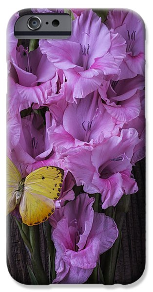 Gladioli iPhone Cases - Yellow Butterfly On Pink Glads iPhone Case by Garry Gay
