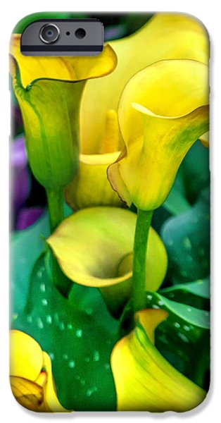 Yellow Images iPhone Cases - Yellow Calla Lilies iPhone Case by Az Jackson