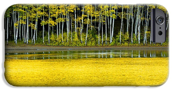 Autumn Season iPhone Cases - Yellow iPhone Case by Chad Dutson