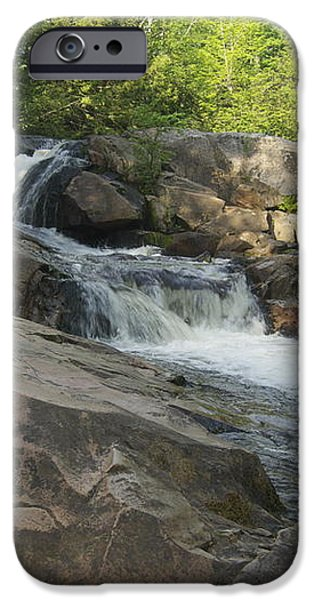Yellow Dog Falls 2 iPhone Case by Michael Peychich