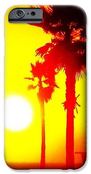 Palm Tree Greeting Cards iPhone Cases - Yellow Eclipse  iPhone Case by Daniele Smith